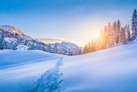 austrijos-alpes-6601