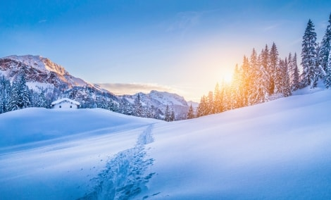 austrijos-alpes-6601-12338