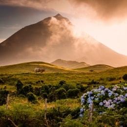 ugnikalnis-pikas-16877