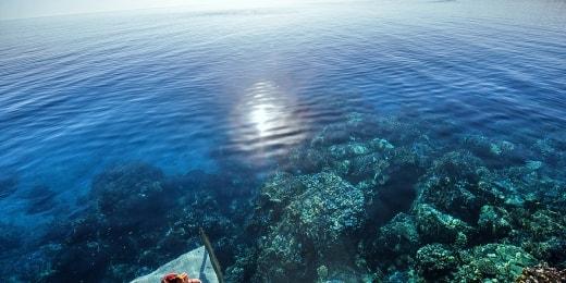 concorde-moreen-beach-resort-koralai-15936