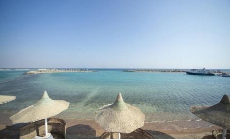 coral-beach-resort-hurghada-papludimys-12457