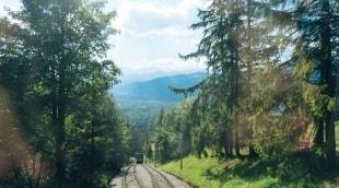 guboluvka-traukinys-12222