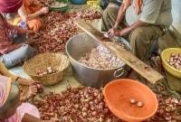 indija-delis-maistas-14730