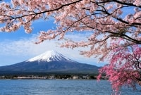 fuji-kalnas-japonija-13565