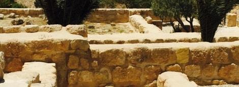 izraelis-8-11482
