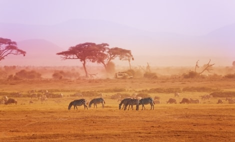 kenijos-nacionalinis-parkas-7814