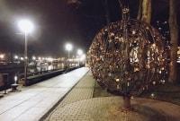 poilsis-klaipedoje-savaitgalis-medis-8118