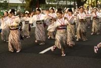 kochi-sokejos-japonija-13558