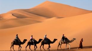 marokas-dykuma-6084