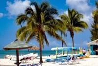 grand-bahama-papludimys-16937