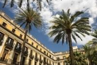 las-ramblas-palmes-barselona-15000