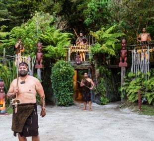maoriai-10756
