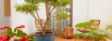 serenity-blue-hotel-balkonas-11507