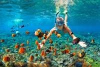 tailandas-snorkeling-12001