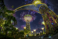 singapore-garden