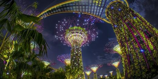 singapore-garden-1