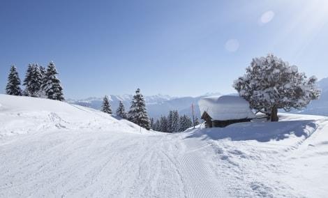 ski-sveicarija-16274