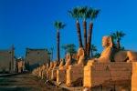 Luksoras