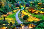 Peradenijos Karališkasis botanikos sodas