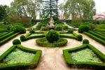 Jardim Botânico sodas