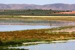 Fuente de Piedra ežeras