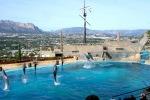 Mundomaro jūros gyvūnų parkas