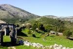 Perithia kaimelis