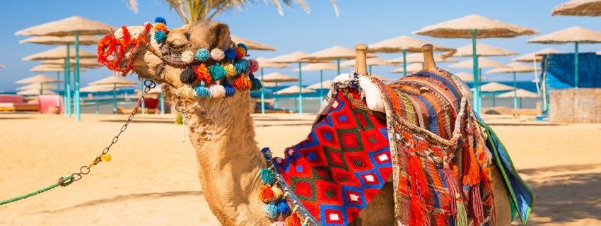 Egiptas, Hurgada