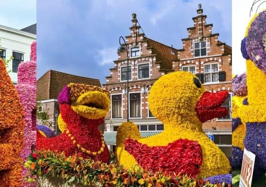 Olandija