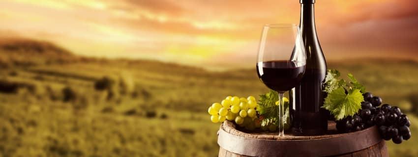 Vyno festivalis Meisene