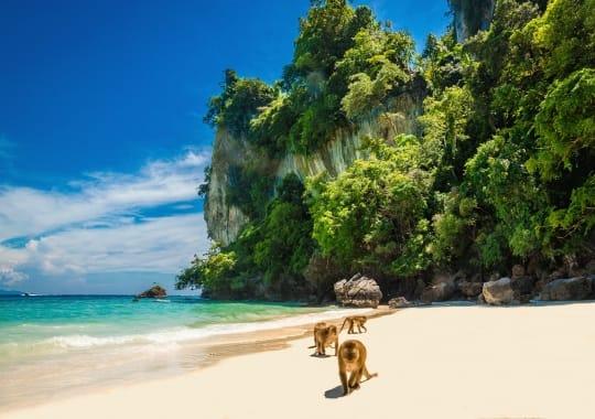 Singapūras ir Tailandas