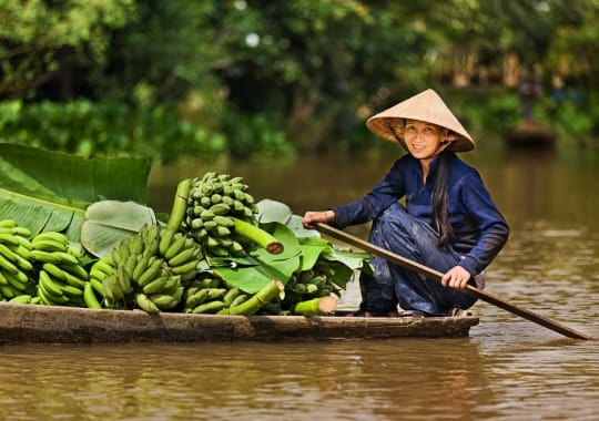 Vietnamas