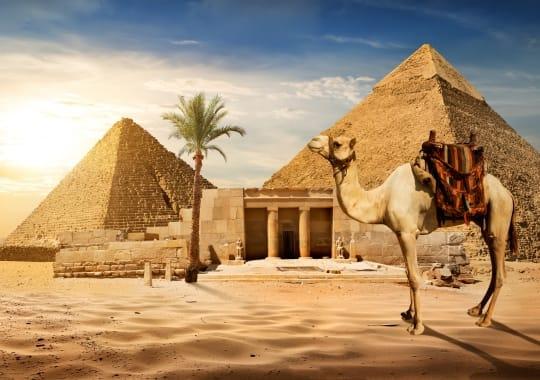 Egiptas, Marsa Alamas