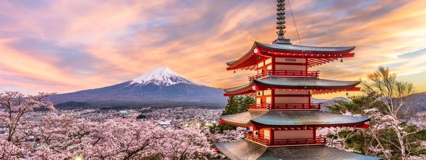 Pažintinė Japonija
