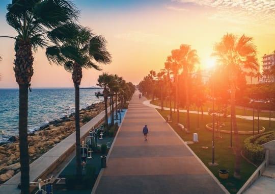 Naujieji metai Kipre