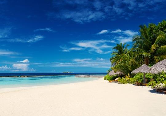 Šri Lanka + Maldyvai