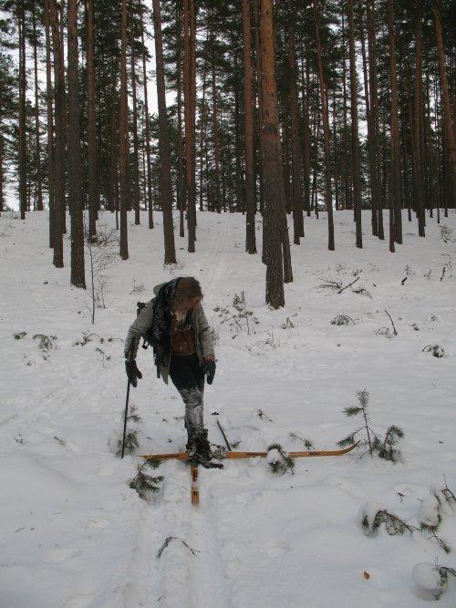zygiai ziema makalius