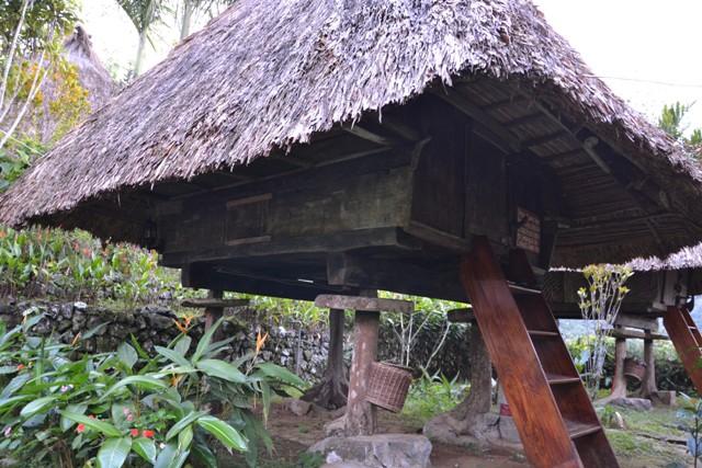 namelis kalnuose su vaizdu į ryžių terasas makalius