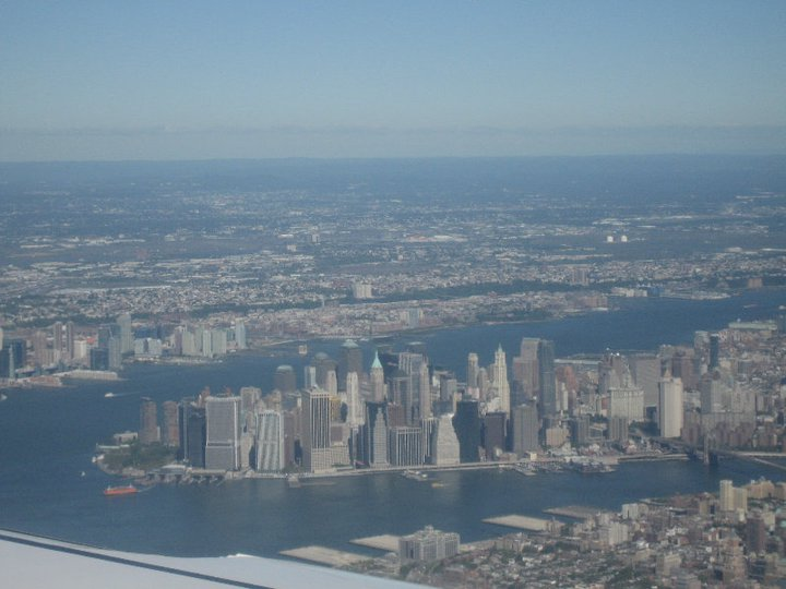 Dovile D. Niujorkas