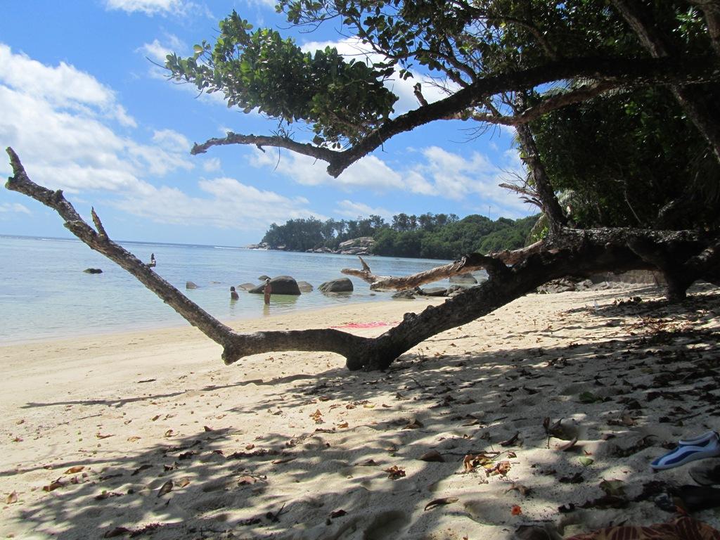Vietinis paplūdimys