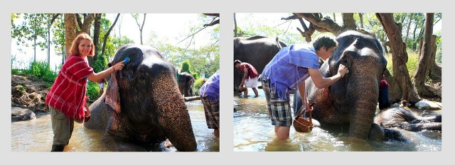 Kai prausi dramblius