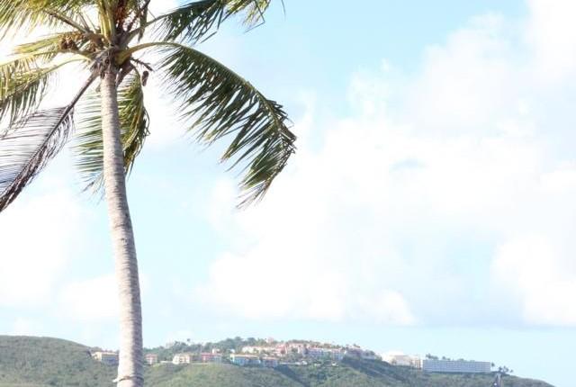 puerto rikas (5)