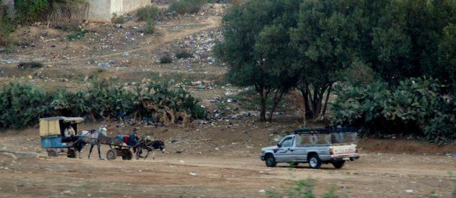 marokas (6)