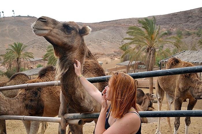 oasis-park-zoologijos-sodas-fuerteventura2