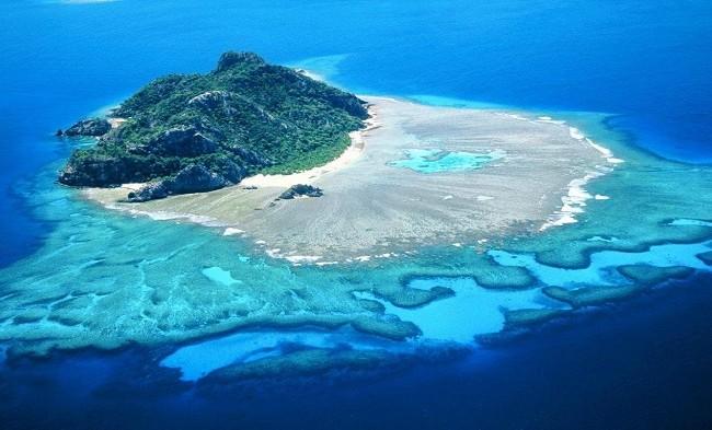 fenikso salos